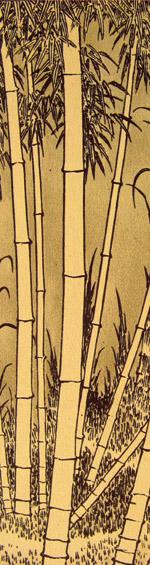 Der Bambus Eine Zen Geschichte